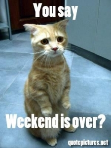 48889-Weekend-Is-Over