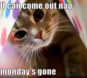 Happy-Tuesday2