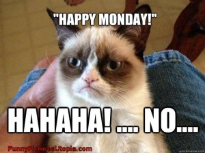 Grumpy-Cat---Happy-Monday-----NO